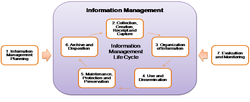 Graphic depicting information management life cycle